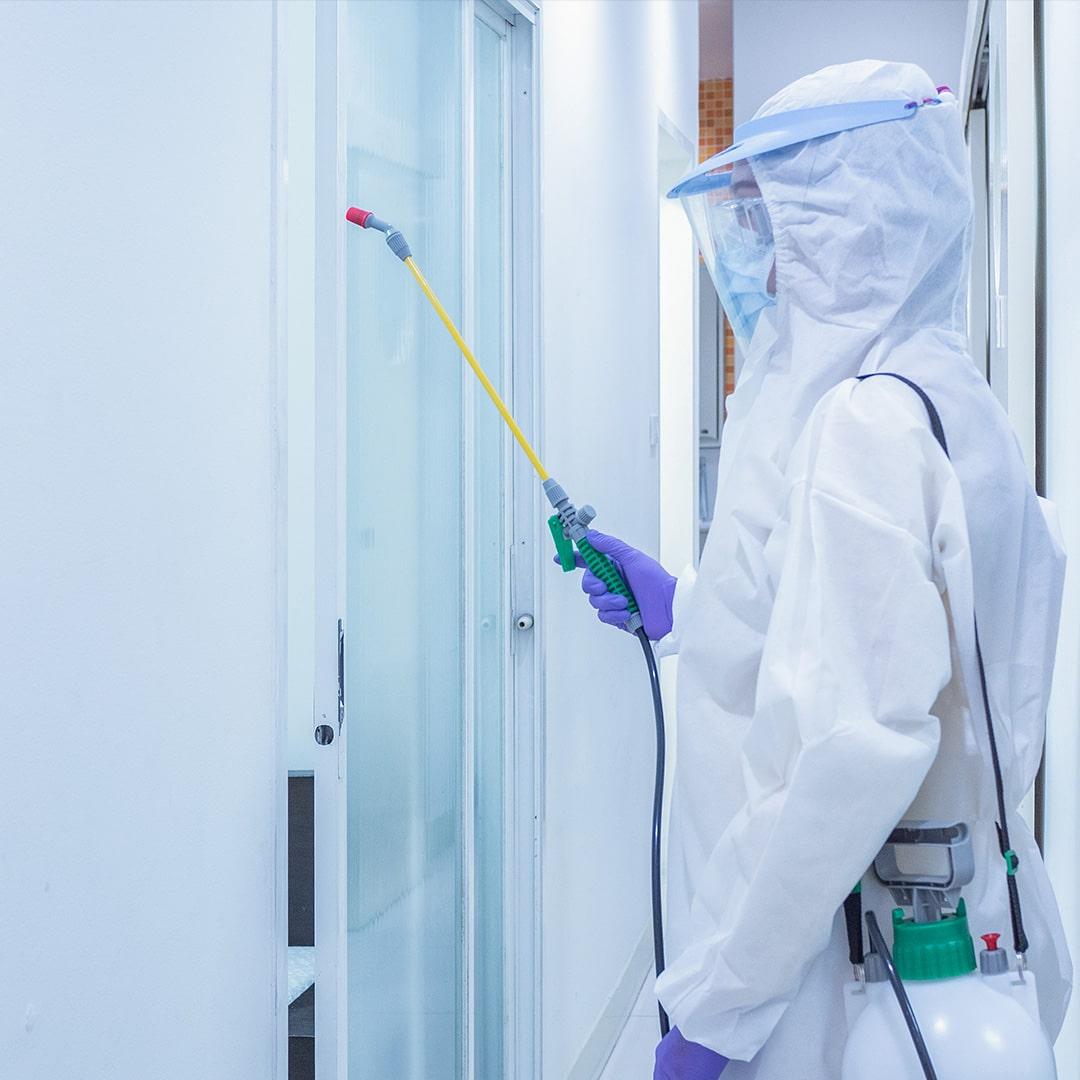 desinfecciones sevilla